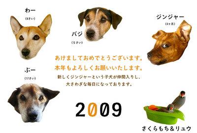 newyearcard2009.jpg